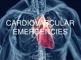 all cardiac emergencies
